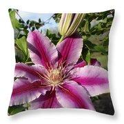 Clematis Petals Throw Pillow