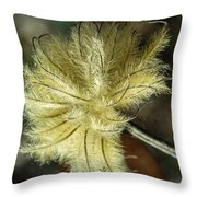 Clematis Seed Head 1 Throw Pillow