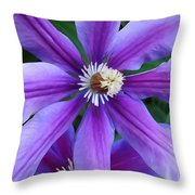 Clematis Vine Throw Pillow
