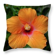 Clementine Hibiscus Throw Pillow