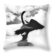 Swans In Love Throw Pillow