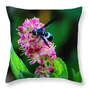 Clethra And Wasp Throw Pillow