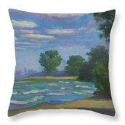 Cleveland Vista Throw Pillow