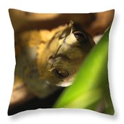 Clever Woodhouse Throw Pillow