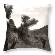 Cliff Between Joshua Throw Pillow