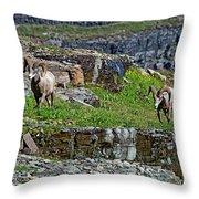 Cliff Walker Throw Pillow