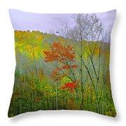 Climb Into Autumn Throw Pillow