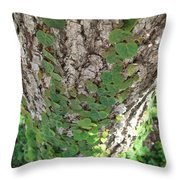 Climbers Throw Pillow