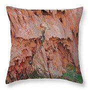 Climbing Mooney Throw Pillow