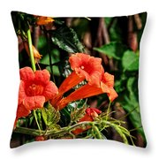 Climbing To The Sun Throw Pillow