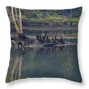 Clinch River Beauty Throw Pillow