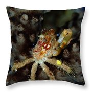 Clinging Crab On Sea Rod Throw Pillow