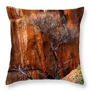 Clinging To Life Throw Pillow by Mike  Dawson