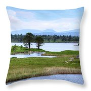 Cloonee Lough - Ireland Throw Pillow