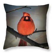 Close Encounter On A Blustery Day Throw Pillow by Lois Bryan