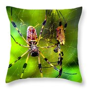 Close Neighbors Throw Pillow