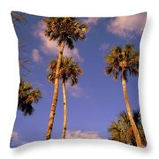Close To The Clouds Throw Pillow