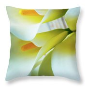 Close Up Calla Lilies Throw Pillow