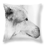 Close Up Encounter Throw Pillow