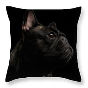 Close-up French Bulldog Dog Like Monster In Profile View Isolated Throw Pillow
