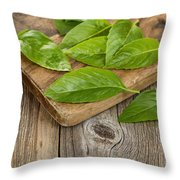 Close Up Fresh Basil Leafs On Rustic Serving Board  Throw Pillow