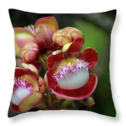 Close-up Macro Of Flower And Fruit Of Cannonball Tree Throw Pillow