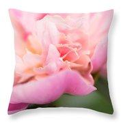 Close Up Macro Peony Flower Throw Pillow