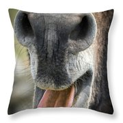 Close-up Of A Donkey's Mouth Throw Pillow