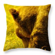 Close Up Of A Grizzily Throw Pillow