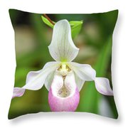 Close Up Of A Orchid Throw Pillow