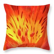 Close-up Of A Peruvian Lily Throw Pillow