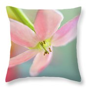 Close Up Of A Pink Flower Throw Pillow