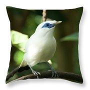 Close-up Of Bali Myna Bird In Trees Throw Pillow