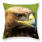 Close-up Of Golden Eagle With Turned Head Throw Pillow