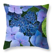 Close-up Of Hydrangea Flowers Throw Pillow