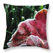 Close Up Of Leaf And Frost Throw Pillow