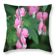 Close Up Of Peacock Pink Bleeding Hearts On Hunter Green Foliage 2 Throw Pillow