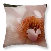 Close-up Of Pink Ladies Flowers Throw Pillow
