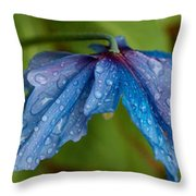 Close-up Of Raindrops On Blue Flowers Throw Pillow