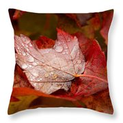Close-up Of Raindrops On Maple Leaves Throw Pillow