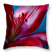 Close Up Of Red Lily Throw Pillow
