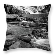 Close Up Of Reedy Falls In South Carolina B W Throw Pillow