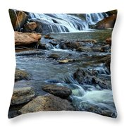 Close Up Of Reedy Falls In South Carolina Throw Pillow
