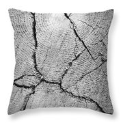 Close Up Of Tree Trunk Throw Pillow