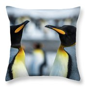 Close-up Of Two King Penguins In Colony Throw Pillow