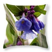 Close-up Of Virginia Bluebells Throw Pillow