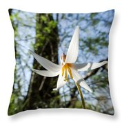 Close-up Of White Trout Lily Throw Pillow