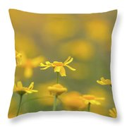 Close Up Of Yellow Flower With Blur Background Throw Pillow
