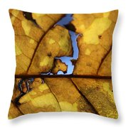 Close Up Of Yellow Leaf Throw Pillow