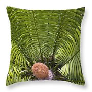 Close-up Palm Leaves Throw Pillow